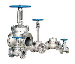 Valves from MAHIMA STEELS