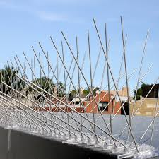 Bird Spikes Supplier in UAE from STEADFAST GLOBAL INDUSTRIAL SUPPLIES FZE