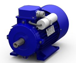 ELECTRIC MOTOR IN SHARJAH ITALY BRAND  from ADEL ACHRAFI TRADING EST BRANCH 1