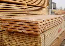 WOOD SUPPLIER UAE from ADEX