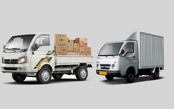 TRANSPORT COMPANIES from ECO SENSE GENERAL CONTRACTING