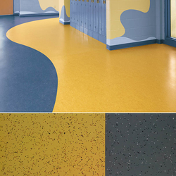 Hospital Flooring Suppliers In Dubai UAE from ZAYAANCO