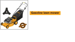 Gasoline lawn mower suppliers in Qatar from NINE INTERNATIONAL WLL