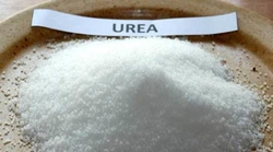 Urea from GULF ROOTS GENERAL TRADING LLC