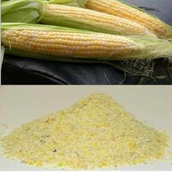 Maize & Maize Meal
