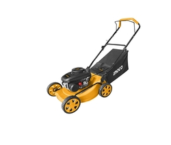 Gasoline lawn mower suppliers in Qatar from RALEON TRADING WLL , QATAR / TELE : 30012880 / SAQIB@RALEON.ME