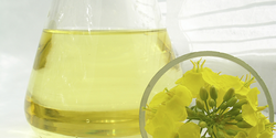 CONDAT vegetable based water soluble oils UAE from MILLTECH FZE