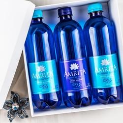 AMRITA ALKALINE ANTI-AGING MINERAL WATER 500ML ...