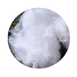 Polyester low melt fiber for nonwoven 0543105999 from POLYESTER STAPLE FIBER FZE