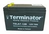 Sealed lead Acid Maintenance Free Batteries