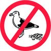 BIRD CONTROL SERVICES MUSCAT OMAN