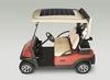 Solar Drive Utility Vehicles