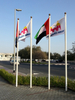 uae fiber glass ,GI and aluminum flag poles