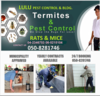 PEST CONTROL IN UAE