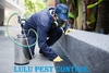 PEST CONTROL SERVICE IN UAE