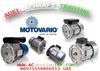 ELECTRIC MOTOR MOTOVARIO BRAND ITALY