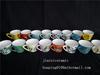 Hand Paint Porcelain Floral Pattern Customized Cer ...