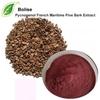 Pycnogenol French Maritime Pine Bark Extract