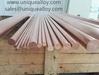 Nickel Beryllium Copper C17510 CuNi2Be