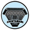 FASTENERS INDUSTRIAL from CHINTAMANI INDUSTRIES